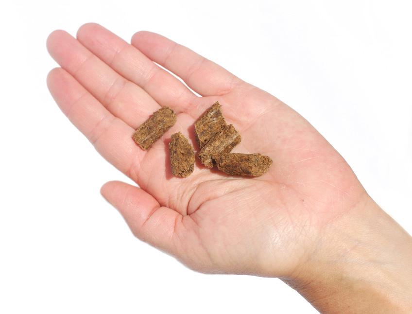 Plato Pet Treats Plato Small Bites Grain Free Salmon Recipe