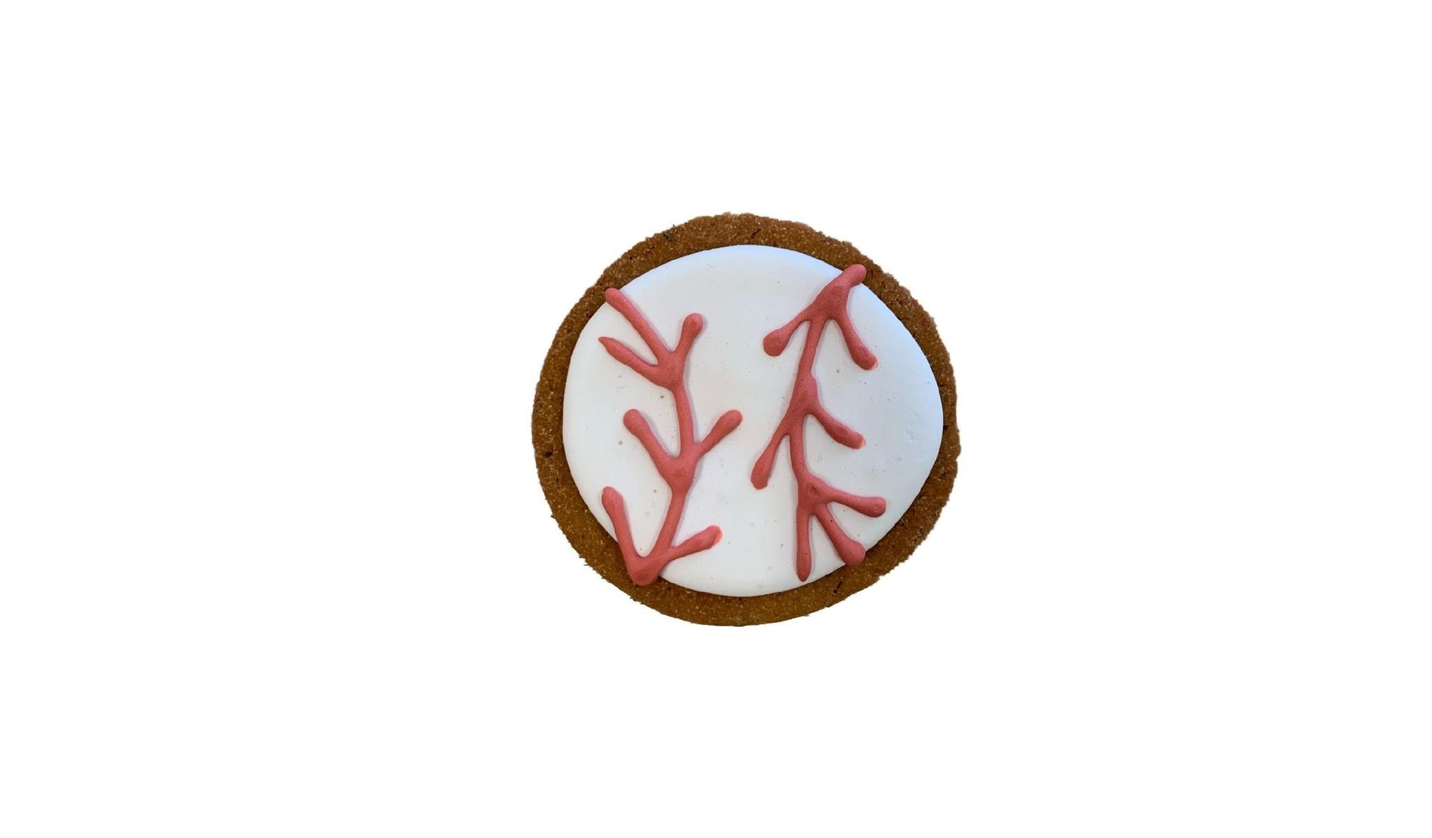 "Bone Bons Mini Baseball Bakery Cookie 2"""