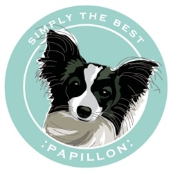 Paper Russells Simply The Best Papillon Car Magnet