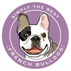 Paper Russells Simply The Best French Bulldog Car Magnet