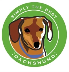 Paper Russells Simply The Best Brown Dachshund Car Magnet