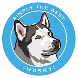 Paper Russells Simply The Best Husky Car Magnet