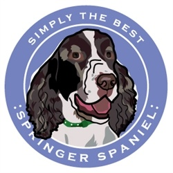 Paper Russells Simply The Best Springer Spaniel Car Magnet