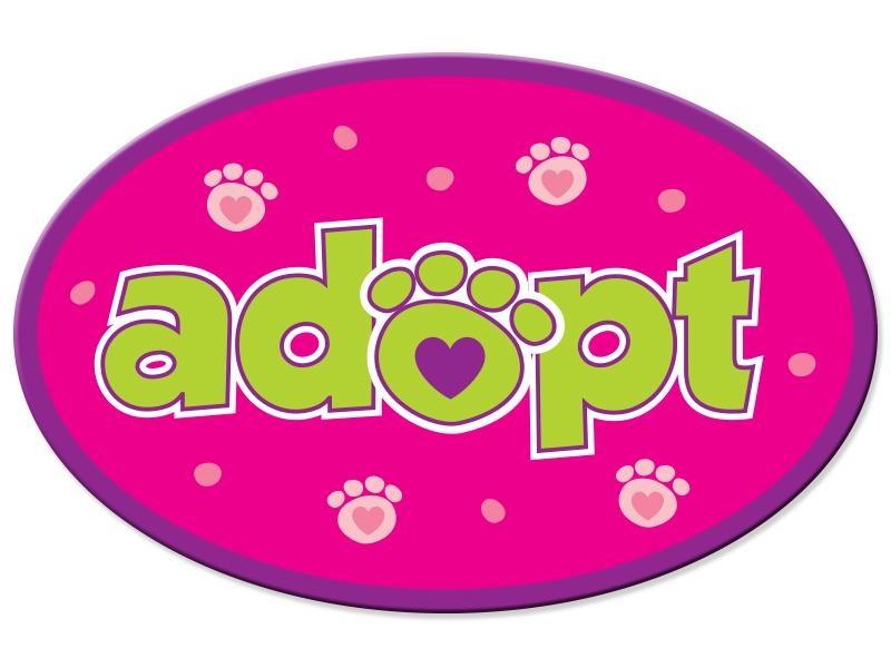 Dog Speak Dog Speak Oval Shaped Magnet - Adopt