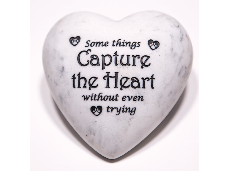 Dog Speak Dog Speak Inspirational Paperweight - Some Things Capture the Heart Without Even Trying