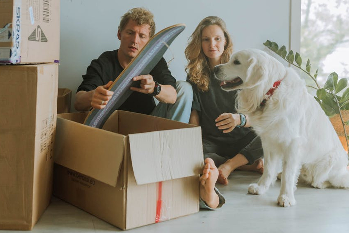 Moving? Tips on how to move with your pet