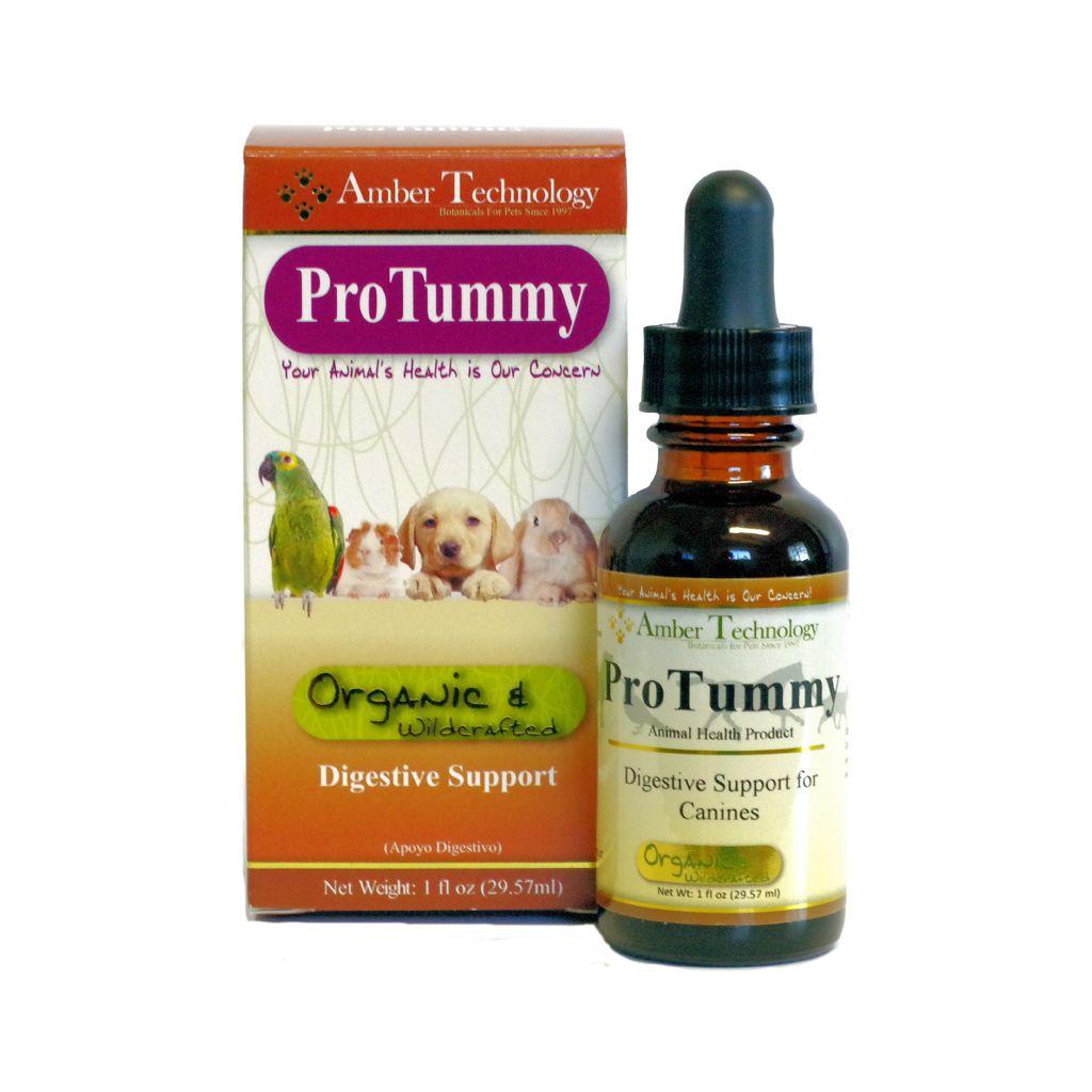 Amber Naturalz Pro Tummy