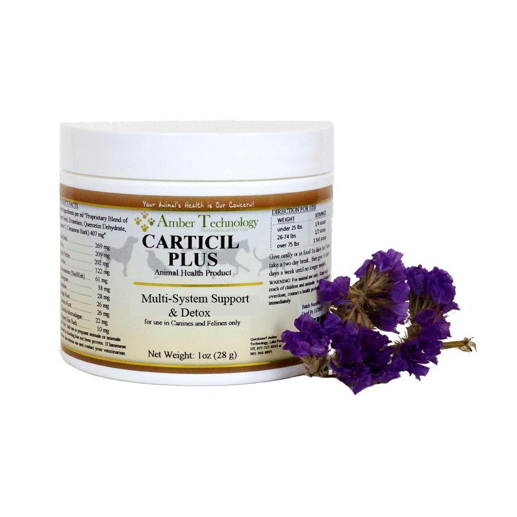 Amber Naturalz Amber Naturalz Carticil Plus