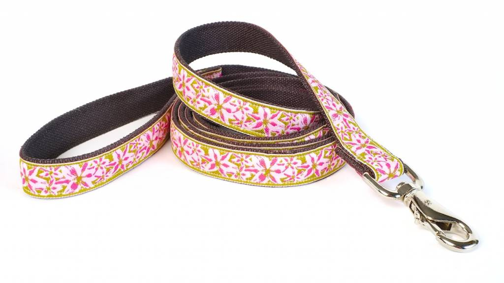 Earth Dog Earth Dog Indi Hemp Leash 6' x 3/4""