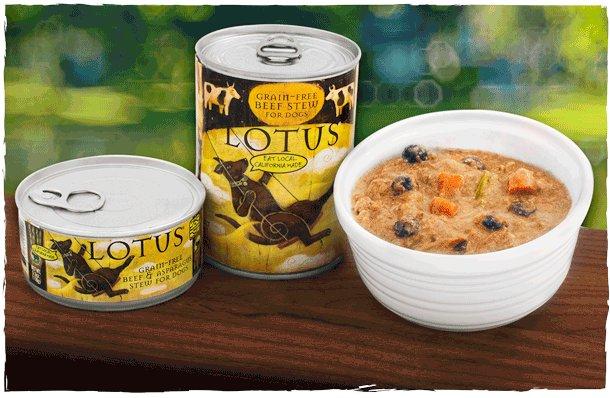Lotus Pet Foods Lotus Grain Free Beef And Asparagus Stew