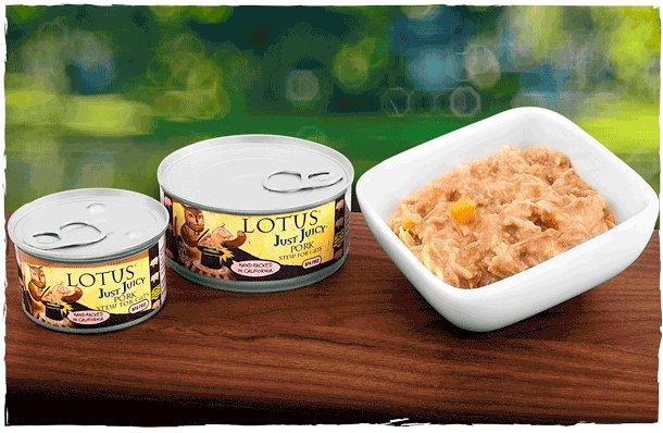 Lotus Pet Foods Lotus Just Juicy Pork Stew For Cats