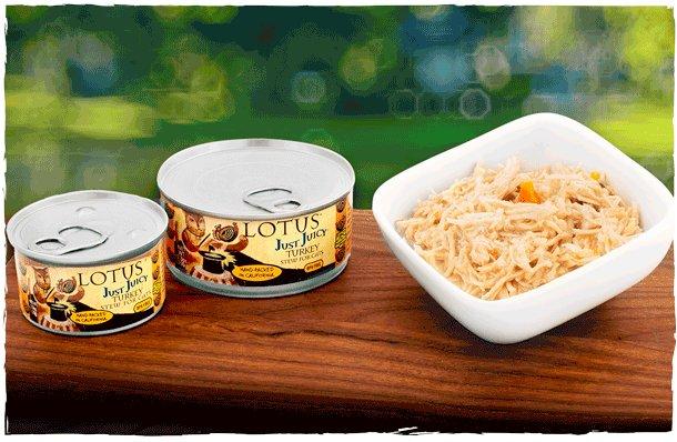 Lotus Pet Foods Lotus Just Juicy Turkey Stew For Cats
