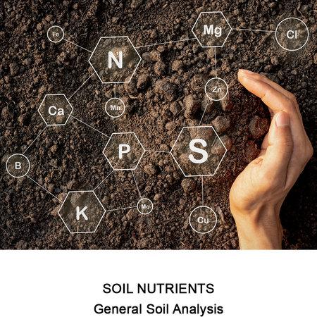 General Soil Analysis