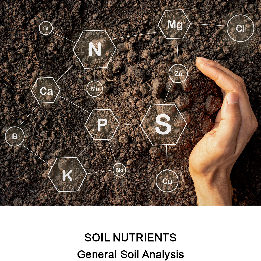 General Soil Analysis
