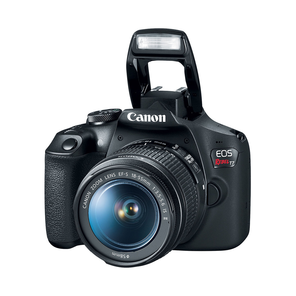 Canon EOS Rebel T7 24.1 MP DSLR Camera with 18-55mm Lens