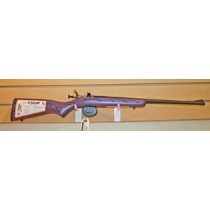 Keystone Crickett 22LR Single Shot Youth Rifle (Purple Laminate) NEW