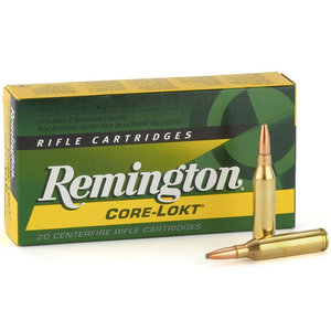 Remington Remington 300 WIN MAG (150 Grain PSP) Core-Lokt (R300W1)