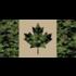"Poco Miltary Cadpat & Tan Canada Flag Sticker (6"" x 3"")"
