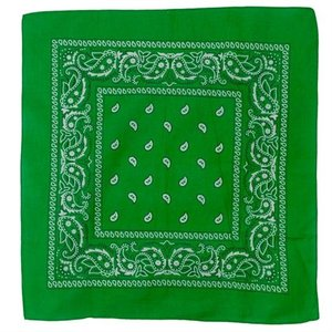 Misty Mountain Forest Green Paisley Bandana (672-FOR)