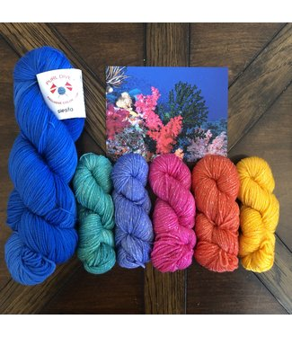 KittyBea Knitting KittyBea Purl Diver Rainbow Reef Set