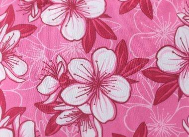 #hibiscuspink