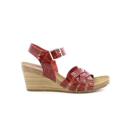 KICKERS SOLYNA ROUGE CROCO K2043RC 775711-50+42