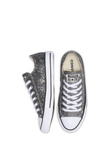 CONVERSE CHUCK TAYLOR ALL STAR OX SILVER/BLACK/WHITE C13SS-566271C