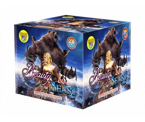 World Class Beauty and Beast - Case 4/1