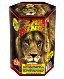 Lion King - Case 24/1
