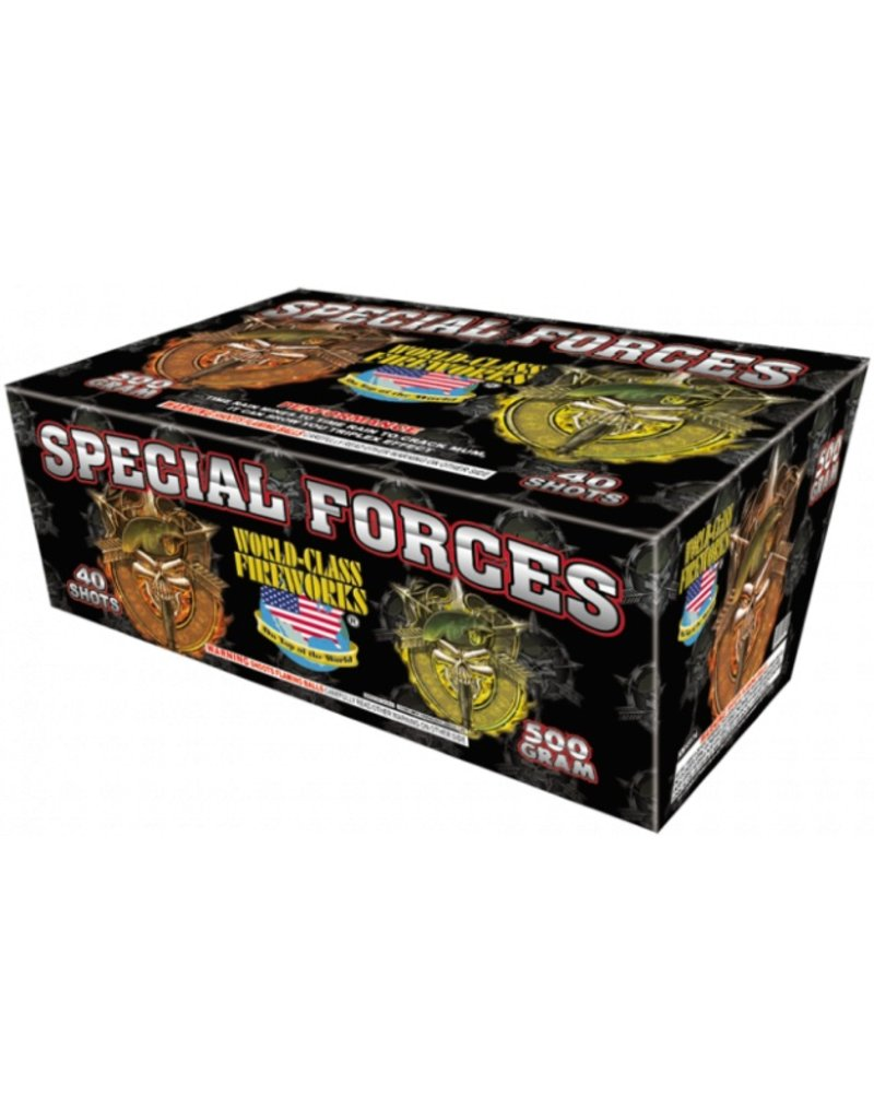 World Class Special Forces - Case 2/1