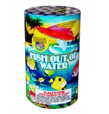 World Class Fish out of Water - Case 12/1
