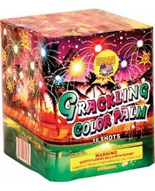 Crackling Color Palm - Case 12/1