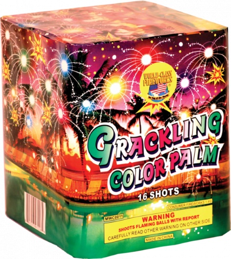 World Class Crackling Color Palm - Case 12/1
