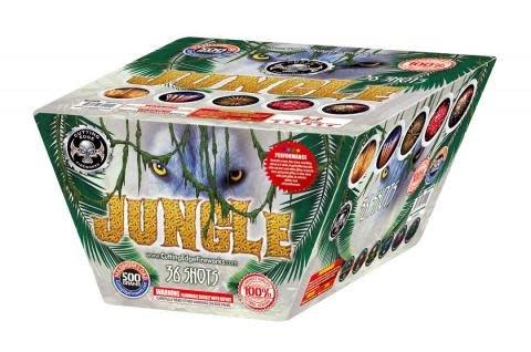 Jungle - Case 2/1