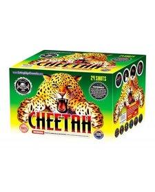 Cheetah - Case 4/1
