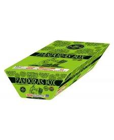Pandora's Box - Case 4/1