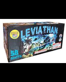 Leviathan - Case 4/1
