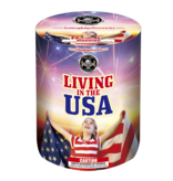 Cutting Edge Living in the USA - Case 12/1