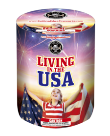 Living in the USA - Case 12/1