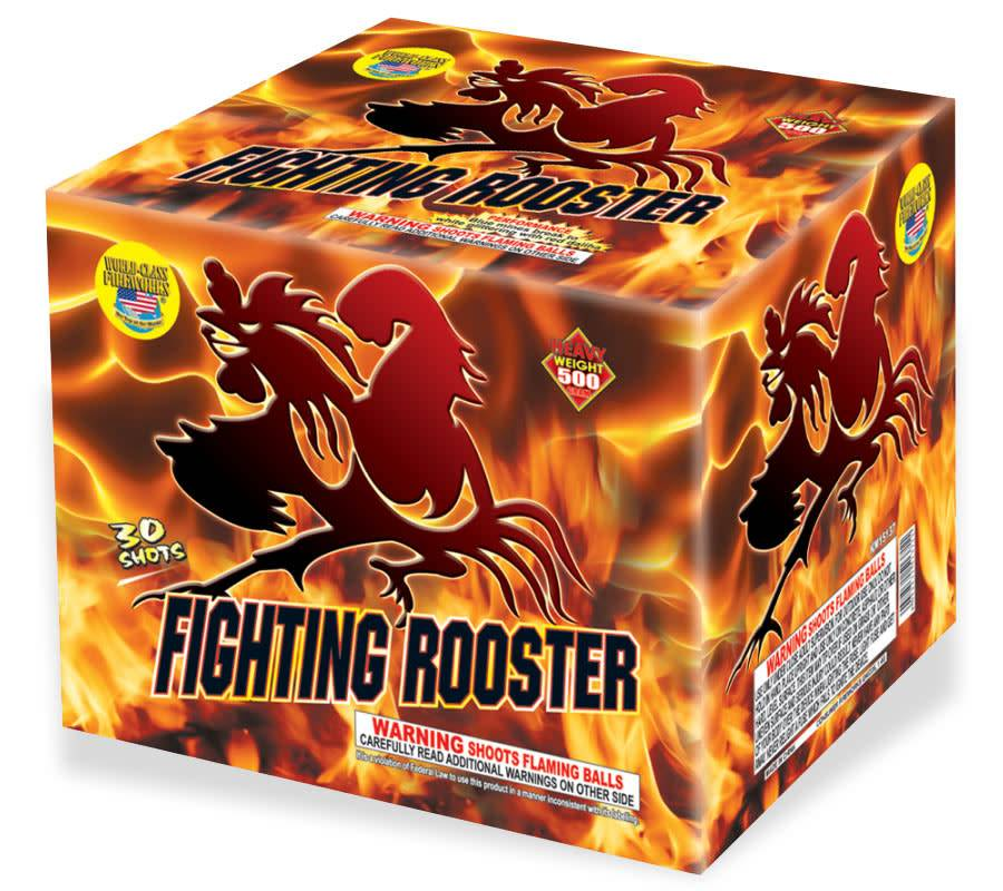 World Class Fighting Rooster