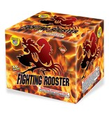 World Class Fighting Rooster - Case 4/1