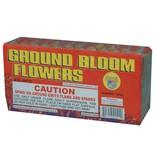 World Class Ground Bloom Flower, WC - Case 20/12/6