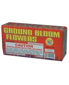 Ground Bloom Flower, WC - Case 20/12/6