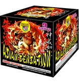 World Class Asian Sensation - Case 4/1