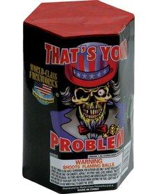 That's Your Problem - Case 24/1