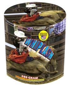 Whiplash - Case 24/1