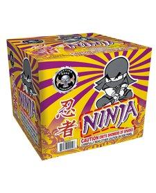 Ninja - Case 8/1