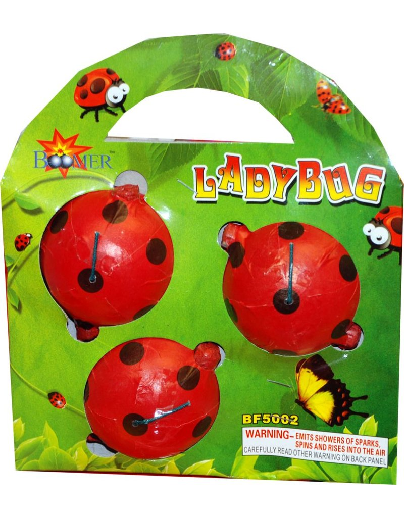 Boomer Lady Bugs, BM - Case 60/3