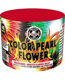 Color Pearl Flower 48s, CE - Case 80/1