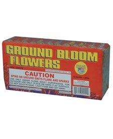 Ground Bloom Flower, WC - Brick 12/6